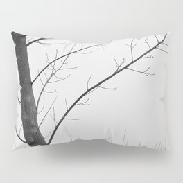 Young Ploplars. Bw. Foggy morning Pillow Sham
