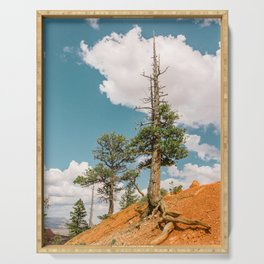Queens Garden Trail Landscape in Bryce Canyon Serving Tray