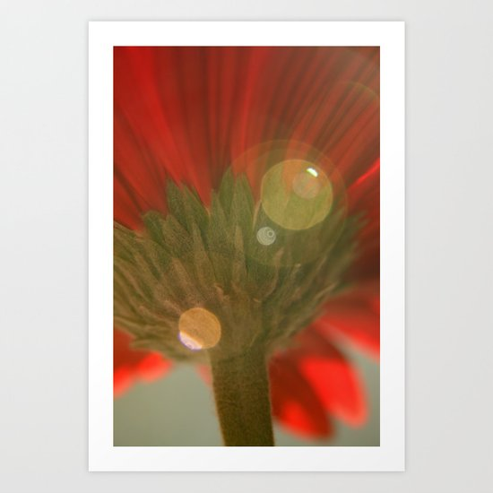 Green Stem Art Print