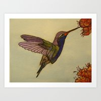 Hummingbird Art Print