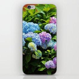 Hydrangea Garden iPhone Skin