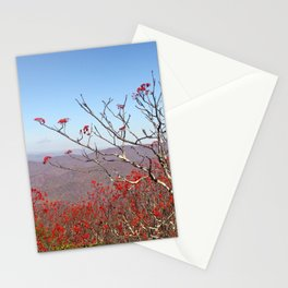 Red Berries, Autumn Colors Stationery Cards