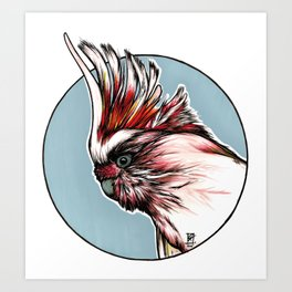 Major Mitchell´s Cockatoo Art Print