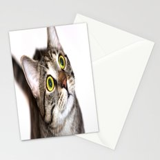 Tiger Cat Stationery Cards
