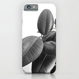 Ficus Elastica #23 #BlackAndWhite #foliage #decor #art #society6 iPhone Case