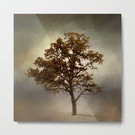 Nutmeg Cotton Field Tree - Landscape Metal Print