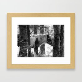 Ghost Horse Framed Art Print