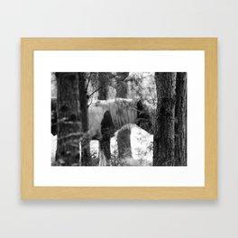 Ghost Horse Framed Art Print