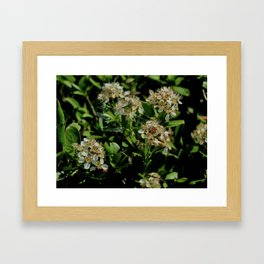 Stopping to Smell the Flowers at the Top of the Mountain Framed Art Print