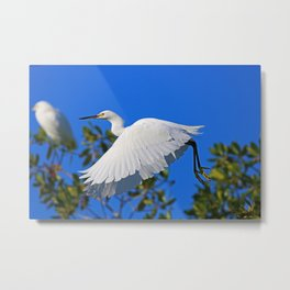 Following Her Moral Compass  Metal Print