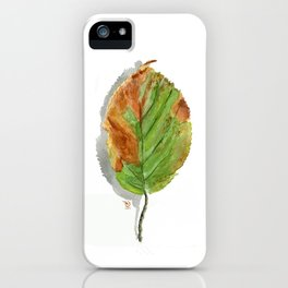 Autumn leaf of hazelnut  iPhone Case