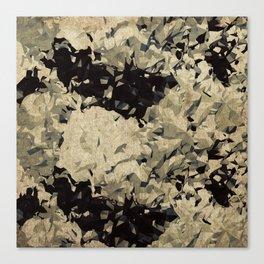 Abstract B13 Canvas Print