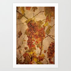 The most noble and challenging of fruits Art Print