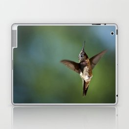 Hummingbird Swoop Laptop & iPad Skin