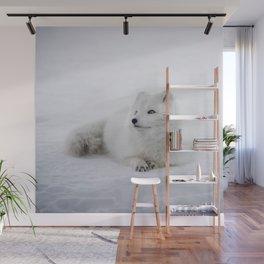 White snow arctic fox Wall Mural