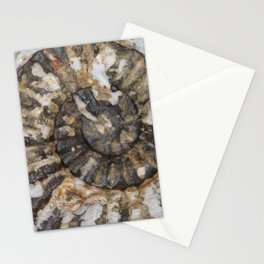 Trilobite Fossil Donegal Stationery Cards