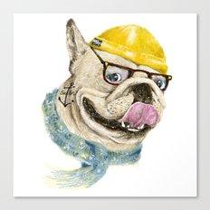 Mr.Bulldog III Canvas Print
