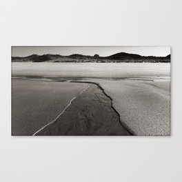 Tiny Stream Canvas Print