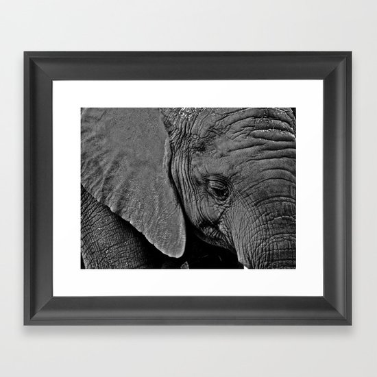 Beauty is Skin Deep Framed Art Print