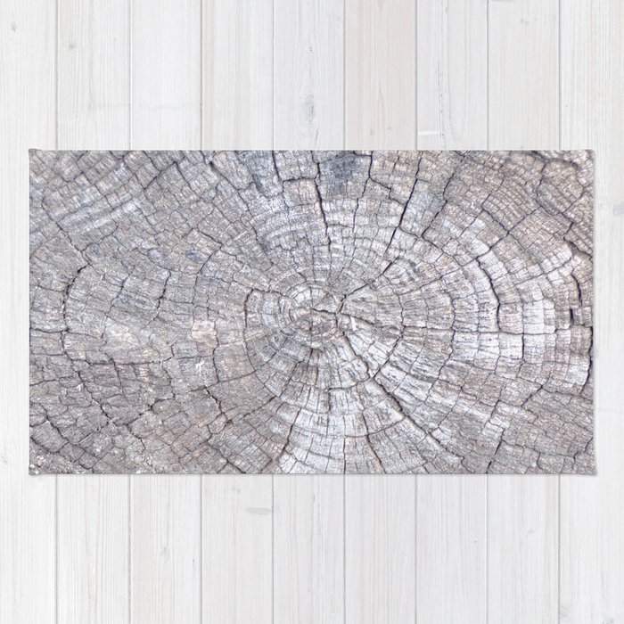 Ancient Tree Stump Grey With Age Very Old Rug