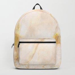Elegant Blush Pink Gold Marbling Backpack