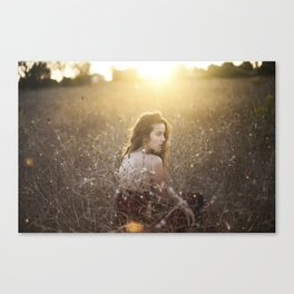 The Fire and the Flies Canvas Print