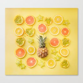 Just Fruity Canvas Print
