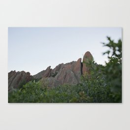 Series: The Scenery Canvas Print