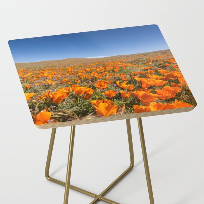 Blooming poppies in Antelope Valley Poppy Reserve Side Table