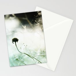 Verve Stationery Cards