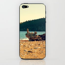 Rocks On The Wood iPhone Skin