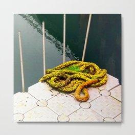 Rapunzel's Boat is Missing Metal Print