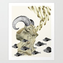 the cusp of rebirth pisces aries anatomical zodiac collage by bedelgeuse Art Print
