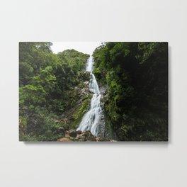 Montezuma Falls Metal Print