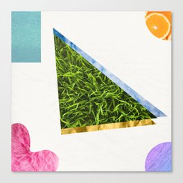 COOL SUMMER Canvas Print