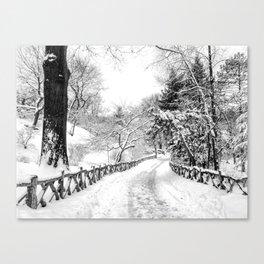 Central Park Winter Path in Shakespeare Garden Canvas Print