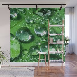 So Fresh and So Green Wall Mural