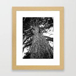Huggable tree Framed Art Print