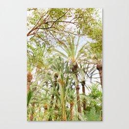 Palm Tree  Life Canvas Print