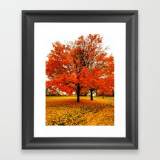 Changing Colors. Framed Art Print