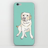 labrador iPhone & iPod Skins featuring Yellow Labrador by Tammy Kushnir