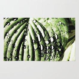 Water Droplets on Leaf Rug