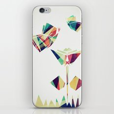 Spring Illustration iPhone & iPod Skin