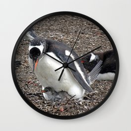 Gentoo Penguin with Chick Wall Clock
