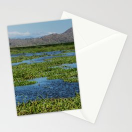 Palo Verde Collectios Stationery Cards