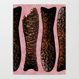Chocolate Fish Nom by Squibble Design Poster