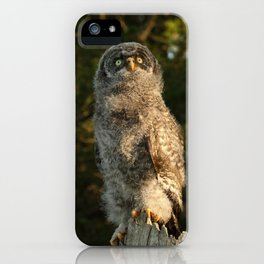 Innocence iPhone Case