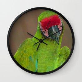 Pretty Parrot Wall Clock