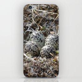 Bird Nest (Pacific Golden Plover) iPhone Skin