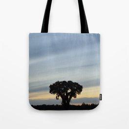 Striped prairie sky... Tote Bag
